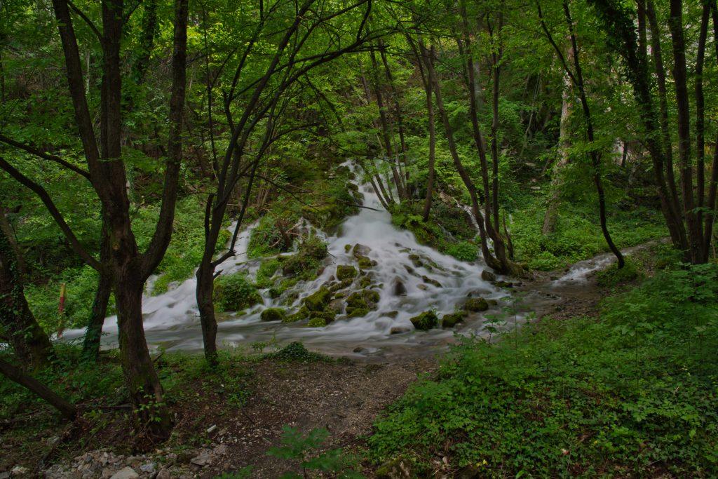 Еко-пътека Бачково