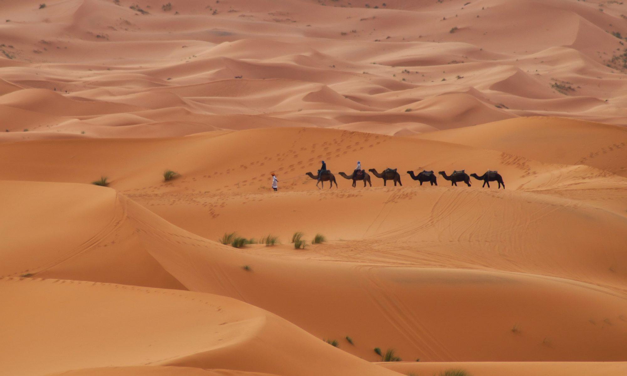 Керван в пустинята